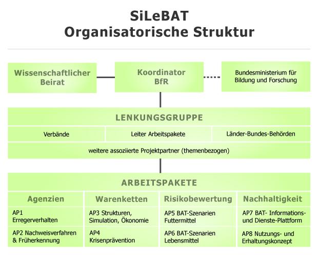 organisationsstruktur-efe45a43